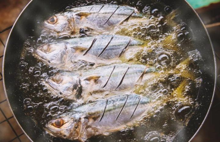 ปลาทู 3 ประโยชน์ของสารอาหารดี ๆ รสชาติอร่อยและยังดีต่อสุขภาพมาก ๆ อีกด้วย สายคนชอบทานปลาบอกเลยว่าไม่ควรพลาด