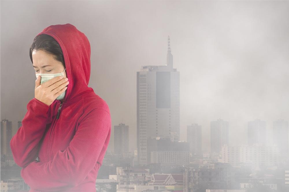 มลพิษทางอากาศ-จากฝุ่นละออง
