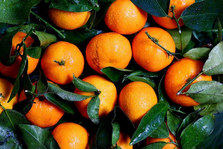 ส้ม ไม่ได้มีดีแค่วิตามินซีและยังนำมาประกอบอาหารได้อีกด้วย