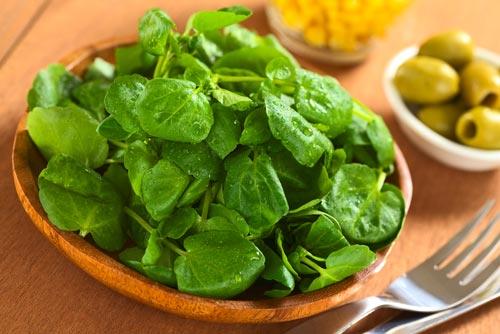 วอเตอร์เครส ราชินีผักใบเขียวอุดมด้วยสารพัดคุณประโยชน์