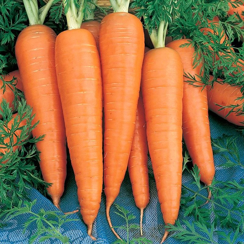 ข้อดีของแครอท